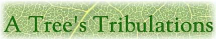 A Tree's Tribulations