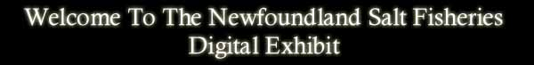 Welcome to the Newfoundland Salt Fisheries Digital Exhibit