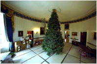 From hanging the lights to lighting the President's portrait, staff and volunteers transform the stately Blue Room into a place glistening with holiday cheer. Each year the chandelier in the Blue Room is removed to make way for the White House Christmas tree.