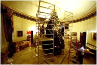 The work begins by hanging lights on the White House Christmas tree.