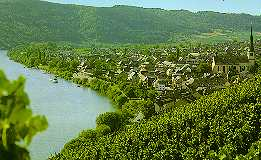 The beautiful Mosel