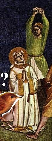 St. Stephen- What did he have to do with the wren?