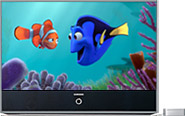 DVI TV playing 'Finding Nemo'