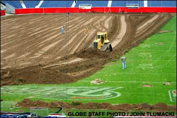 gillette-stadium-grass-c.JP.jpg