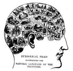 Phrenology is seen today as a classic example of pseudoscience.