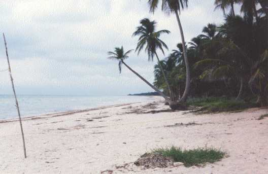 Playa en el municipio de Carmen, Camp.