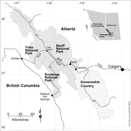 Study area and roads used to research the effects of      roads on wildlife in the Central Canadian Rocky Mountains.
