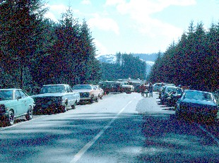 photo of cars lining road on State Route 504 at the roadblock