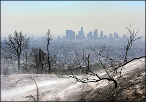 Ash blows from the scorched hills over-looking downtown Los Angeles as firefighters work to contain a wildfire in Griffith Park.