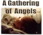 A Gathering of Angels: a Photo Gallery of God's Children, on Earth and in Heaven