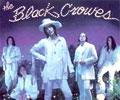 Black Crowes Sampler on JamBaseRhapsody!