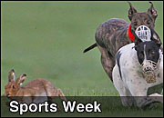 Weekly Sports