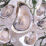 Oyster Farmers Find a Boutique in the Bay
