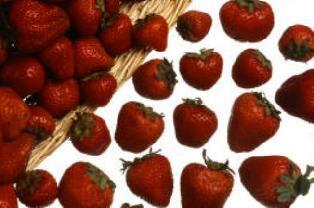 strawberries: