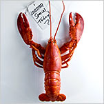 Luxury on Sale: The Lobster Glut