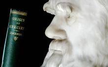 Charles Darwin anniversary: events around the UK