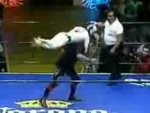 funny video - Amazing Mexican Wrestlers
