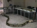 funny video - Beer Bottle Dominos