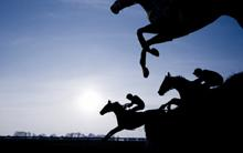 Free bet on today's Cheltenham Festival with Betfair.