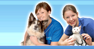 Picture of two veterinary nurses with a cat and dog