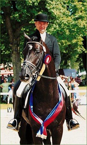 © Hengstation Böckmann -- stallion Depardieu