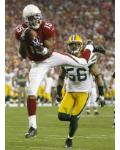 Packers Cardinals Football - Steve Breaston, Nick Barnett