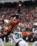 Jets Bengals Football - Andre Caldwell, Jim Leonhard