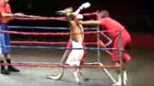 Rocky, the boxing Kangaroo, performs in a boxing ring in the United States.