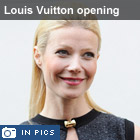 Louis Vuitton opening
