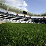 This picture taken on May 7, 2010 shows the grass on the pitch of Mbombela stadium