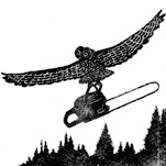Raban: Losing the Owl, Saving the Forest
