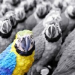 How to Stand Out of the Crowd in Blogging Industry