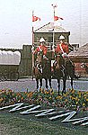 Two RCMP officers on horses