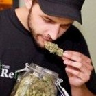Cheapest Weed By State [Info]