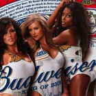 Budweiser to Give Away 500,000 Beers