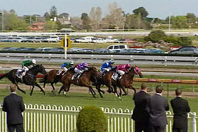 An equine flu outbreak has forced the cancellation of race meetings across Australia (File photo).