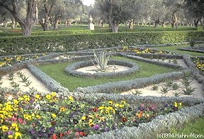 The extensive formal gardens surrounding the Mansion of Bahjí and the Shrine of Bahá'u'lláh..
