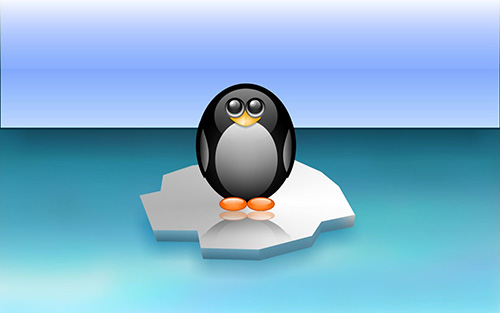 Cute Penguin Image