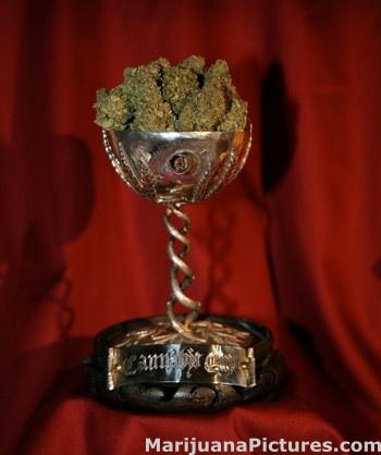 Cannabis Cup 2009