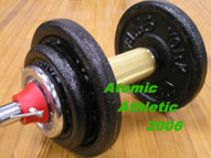 WB001 - Limited Edition Brass Thick Dumbbell Handle