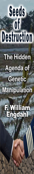 Seeds of Destruction: The Hidden Agenda of Genetic Manipulation by F. William Engdahl