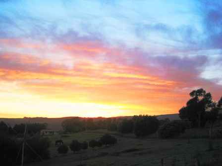 sun's up over Lilydale: