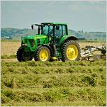 U.S. Approves Genetically Modified Alfalfa