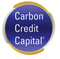 http://www.carboncreditcapital.com/