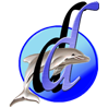 Dolphin Design Web & Graphics