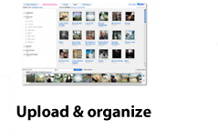 Upload & organize