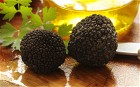 Grow your own truffles