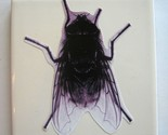 Hand Upcycled Ceramic Tile- HOUSE FLY