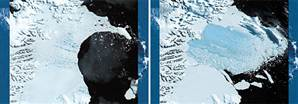 Going, Going, Gone: Satellite images show the Larsen B ice shelf in Antarctica disintegrating into the Weddell Sea in January, 2002 (left) and March of the same year (right). The 1,255-square-mile mass of ice, 700 feet thick and weighing 720 billion tons, collapsed over three months, setting thousands of icebergs adrift