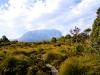 Mt Pelion West